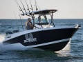 Wellcraft 262 Scarab Offshore