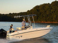 Bayliner T21 Bay