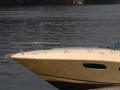 Sea Ray Sport Cruiser 350