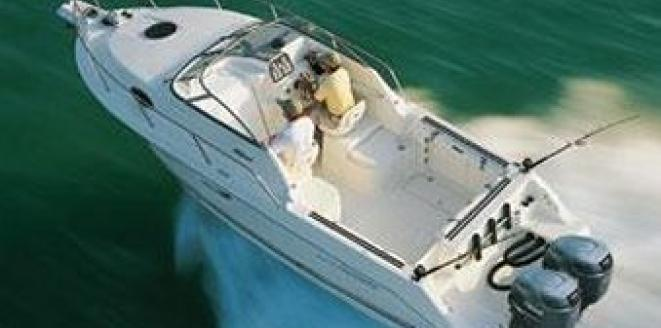 Wellcraft Coastal 250 Neuboot