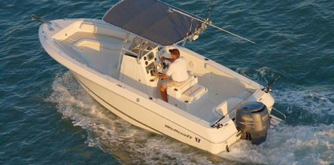 Wellcraft Fisherman 210 Neuboot